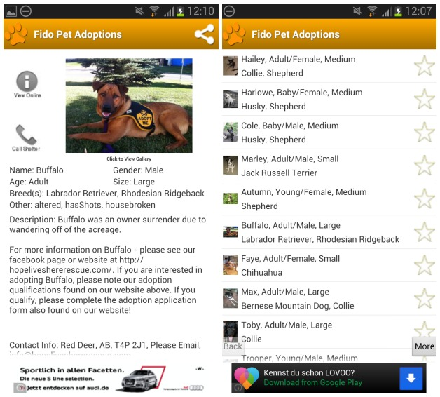 Fido Pet Adoptions